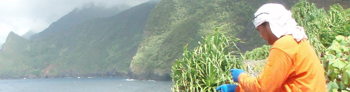 Slider- Kukaiwaa-J&K2